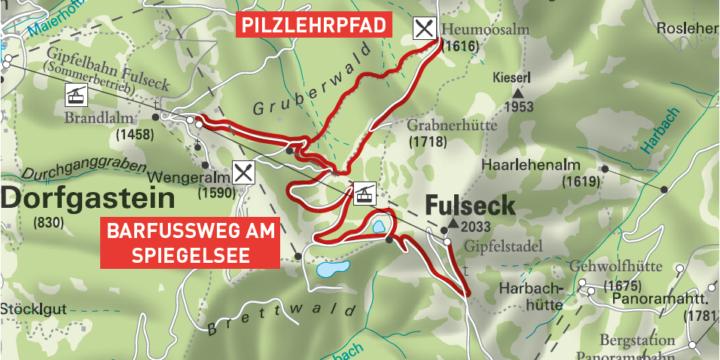 Dorfgastein Pilzpehrpfad - Wanderung zur Heumoosalm