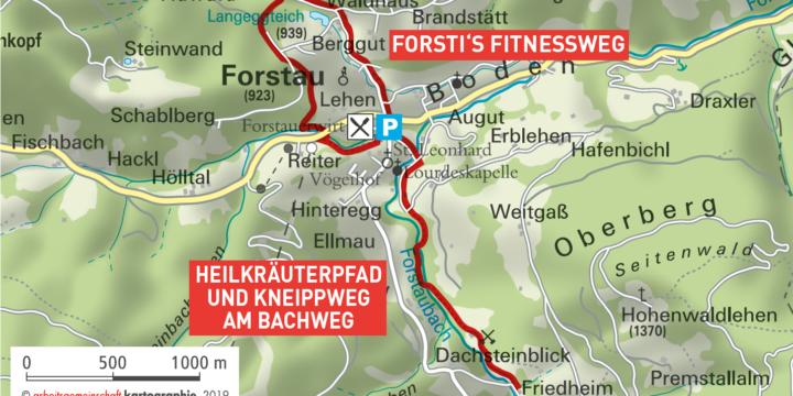 Heilkräuterpfad und Kneippweg in Forstau