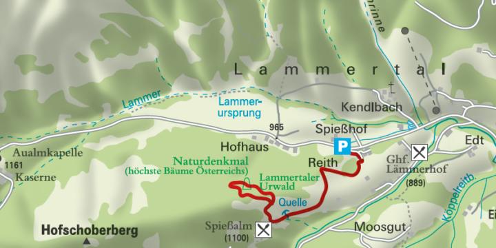 Lammertaler Urwald